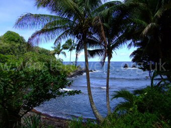 The beautiful Onomea Bay, by the Hawaii Tropical Botanical Gardens near Hilo